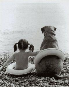 doggie guide